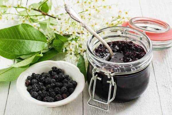 Рецепты консервирования— черемуховые заготовки на зиму
