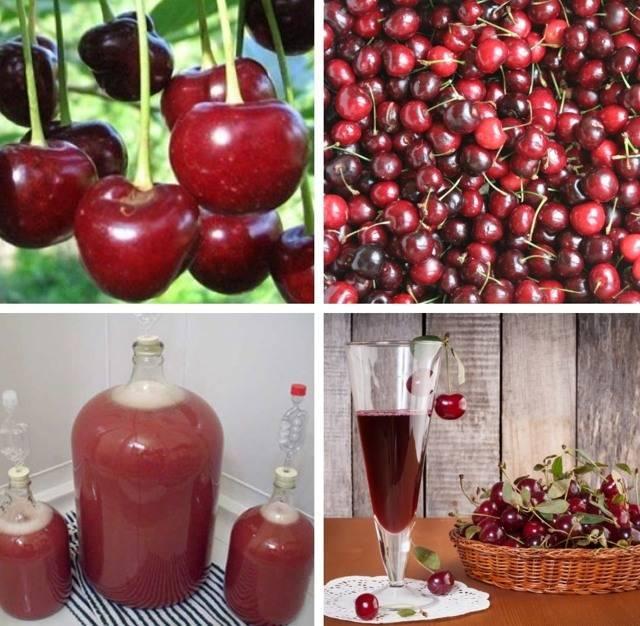 Вино з ожини в домашніх умовах рецепт