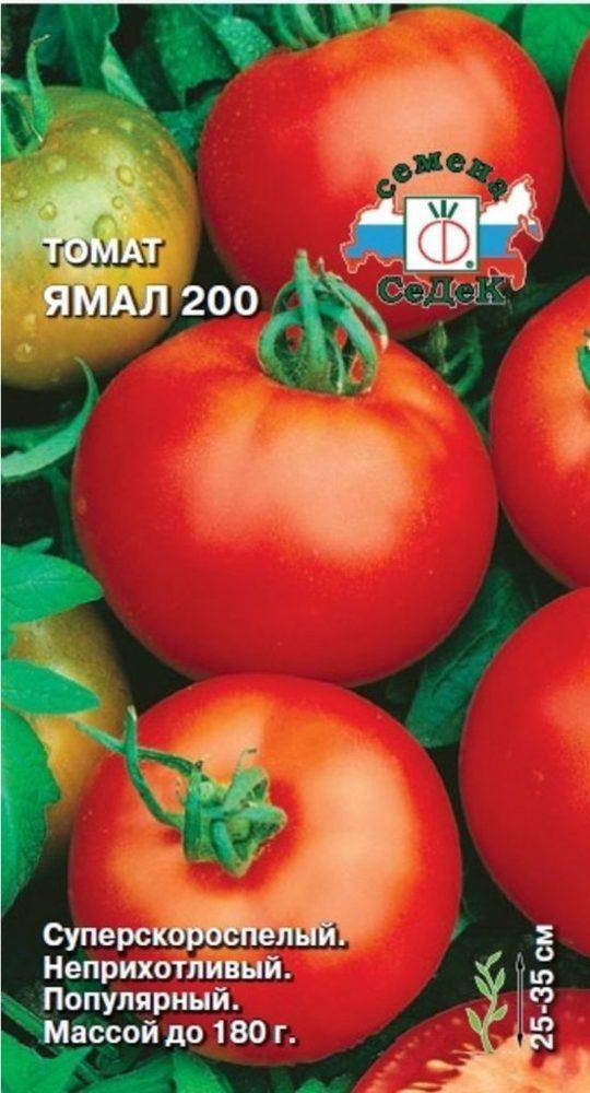 Любимые садоводами помидоры «ямал»: выращиваем неприхотливый сорт самостоятельно без особого труда