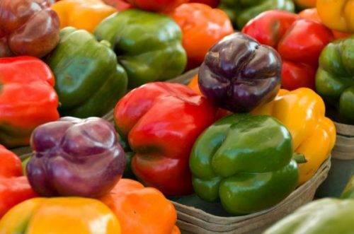 Перец калифорнийское чудо черное. перец калифорнийское чудо описание сорта фото отзывы. подготовка семян к посадке