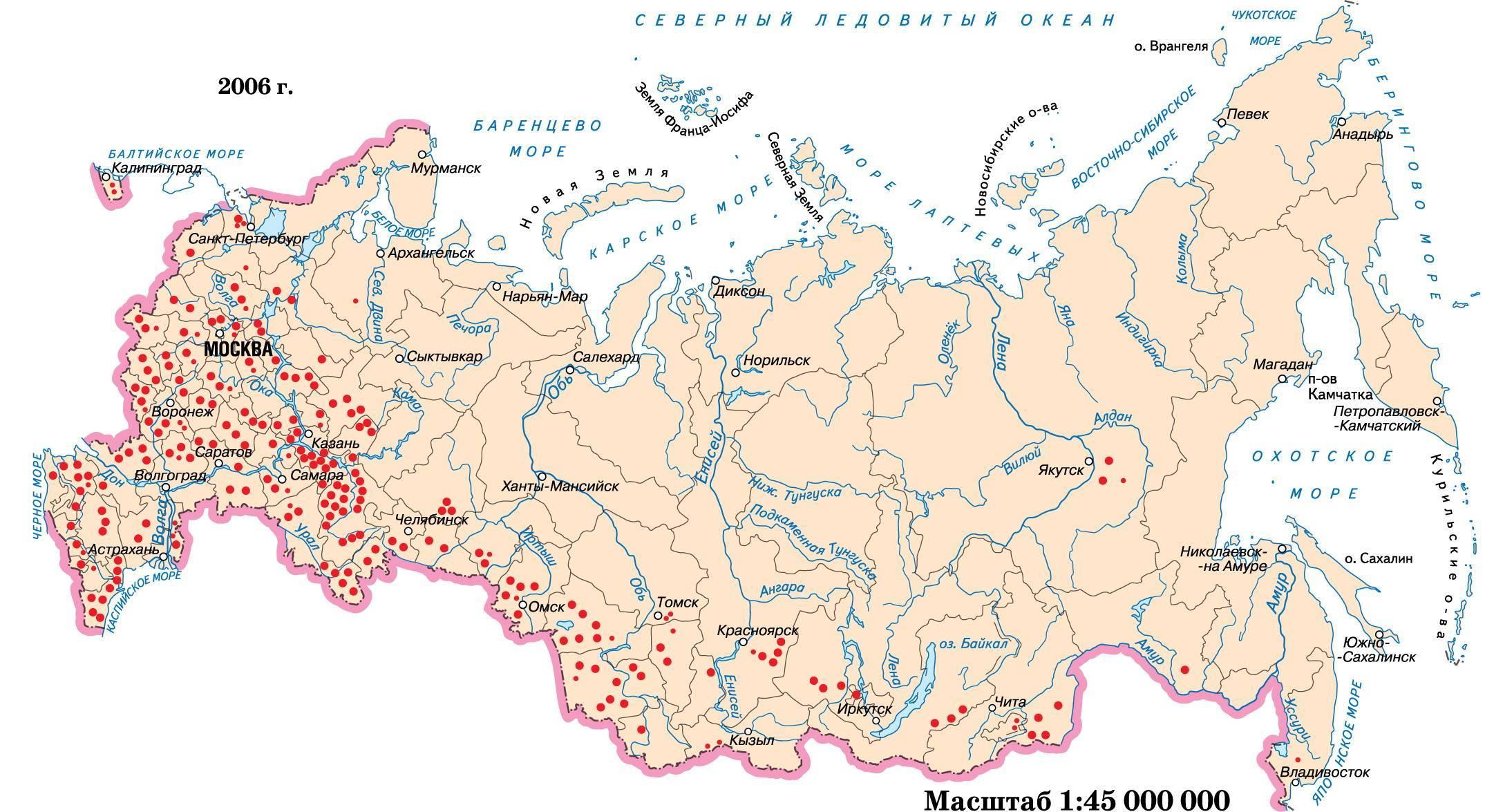 Коневодство в россии: особенности и основные виды