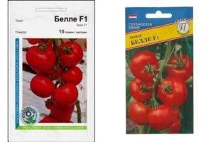 Сорт (гибрид) помидоров «ильич f1»: описание, характеристика, урожайность, фото и видео