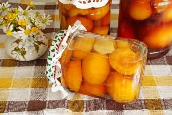 ТОП 10 рецептов, как сделать на зиму абрикосы в сиропе дольками