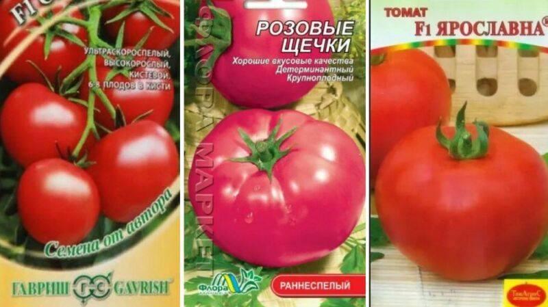 Какие самые лучшие сорта помидор для теплицы из поликарбоната