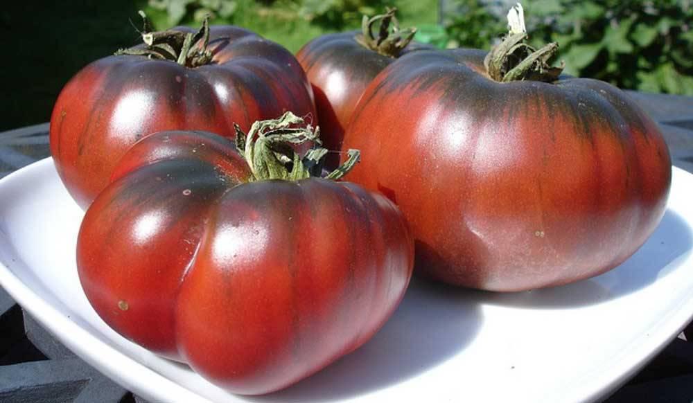 Описание сорта томата черный ананас и правила выращивания