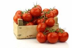 Звезда техаса — мощный томат для теплиц со впечатляющим описанием