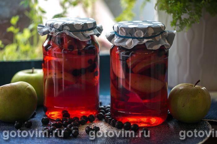 ТОП 10 рецептов компота на зиму из яблок и черноплодной рябины
