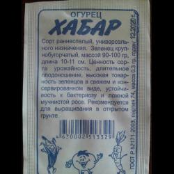 Описание сорта огурцов Хабар, его характеристика и выращивание