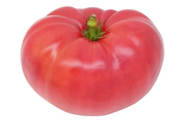 Сорта томатов: пузата хата