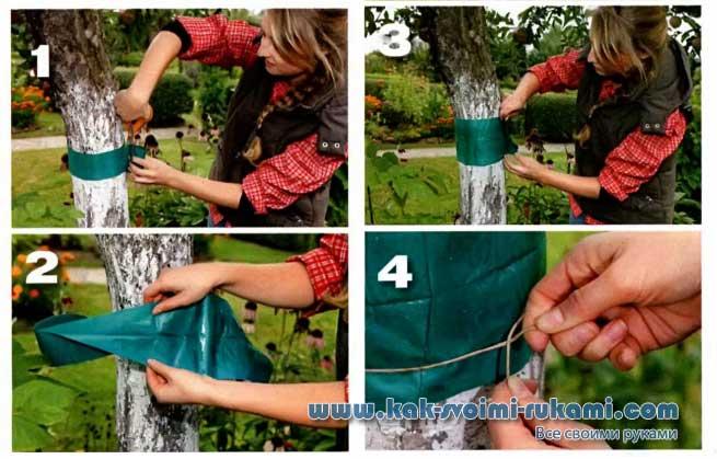 Ловчий пояс для дерева – как сделать своими руками и правильно закрепить