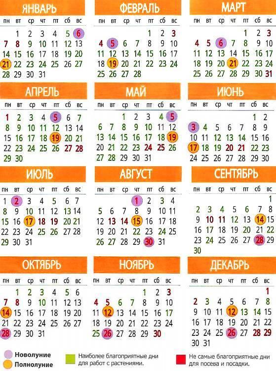 Благоприятные дни для посадки рассады в мае 2020 года по лунному календарю