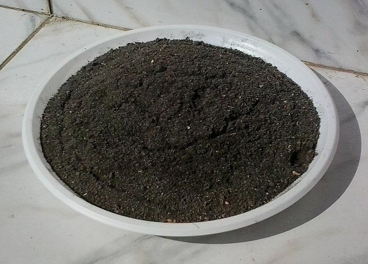 Что такое сапропель, как использовать вещество в сельском хозяйстве