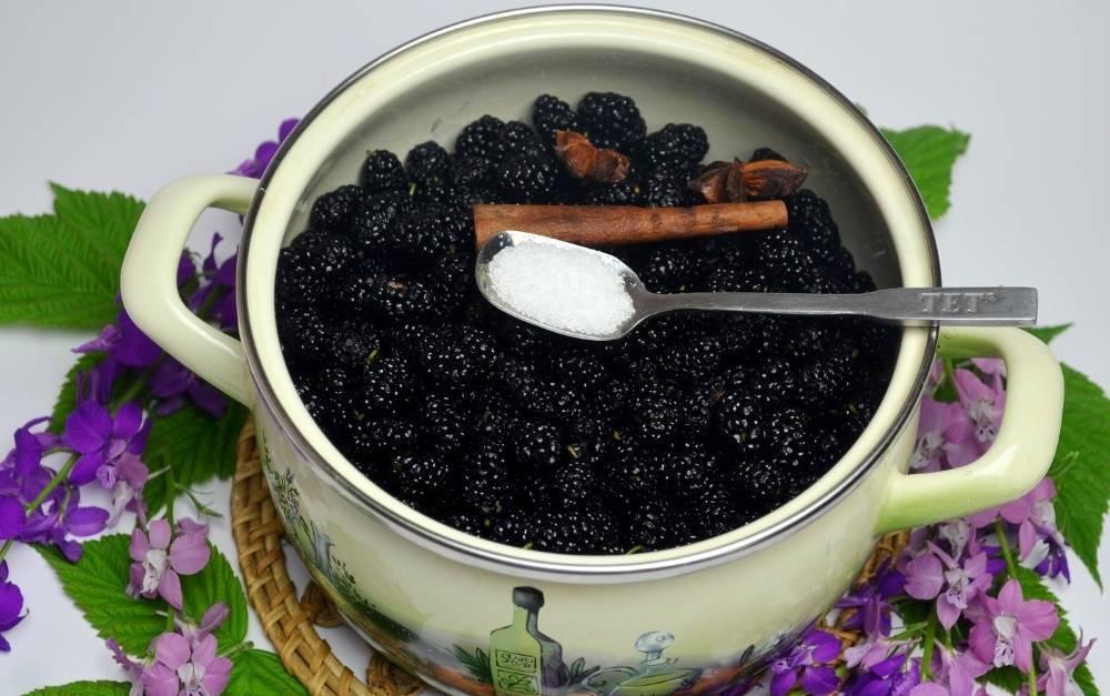 Домашние ликеры из ягод шелковицы (тутовника) – 4 удачных рецепта