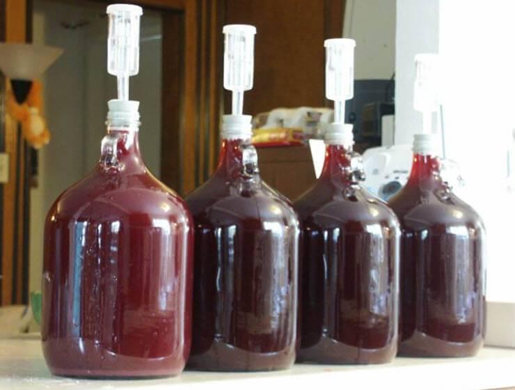 Топ 8 простых рецептов приготовления рябинового вина в домашних условиях