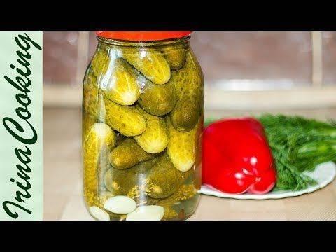Рецепты, как приготовить на зиму маринованные огурцы с сельдереем, выбор овощей и сроки хранения