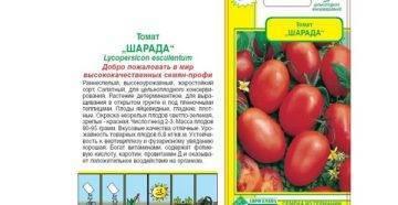 Томат вельможа: характеристика и описание сорта, урожайность с фото