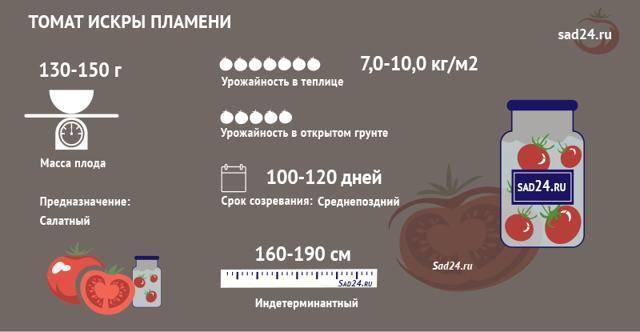 Описание томата искры пламени и агротехника культивирования сорта