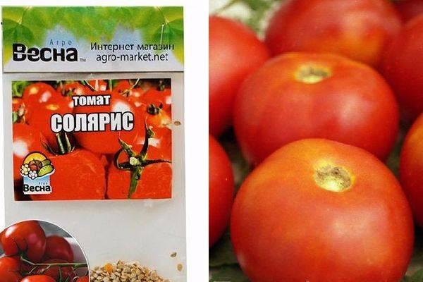 Описание сорта томата Солярис, особенности выращивания