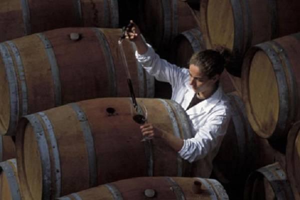 С помощью каких добавок можно улучшить и исправить вкус домашнего вина, проверенные способы