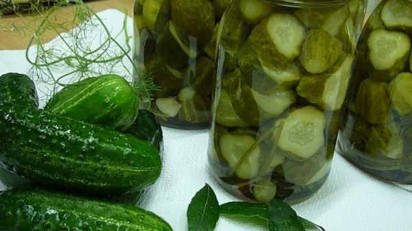 Лучшая подборка рецептов соленых огурцов горячим и холодным способом: выбирайте, что вам по душе!