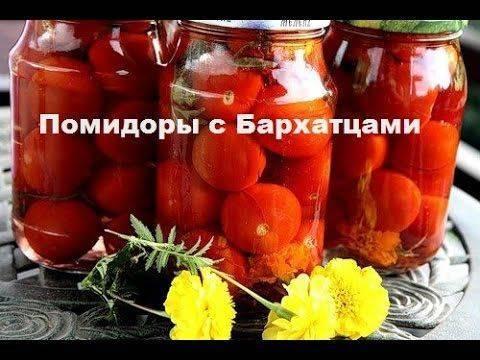 Капуста, маринованная с помидорами на зиму в банках