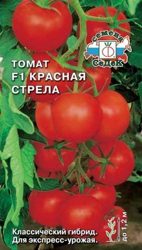 Характеристика и описание сорта томата Красная стрела