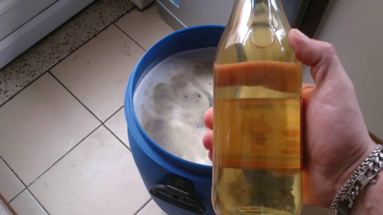 Как сделать медовое вино дома