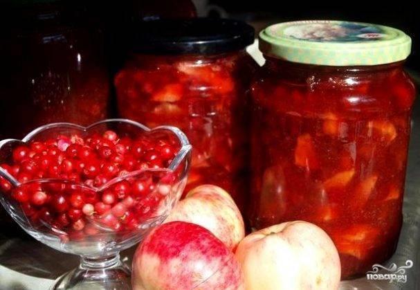 Варенье из брусники с яблоками: топ-10 рецептов как сварить на зиму с фото
