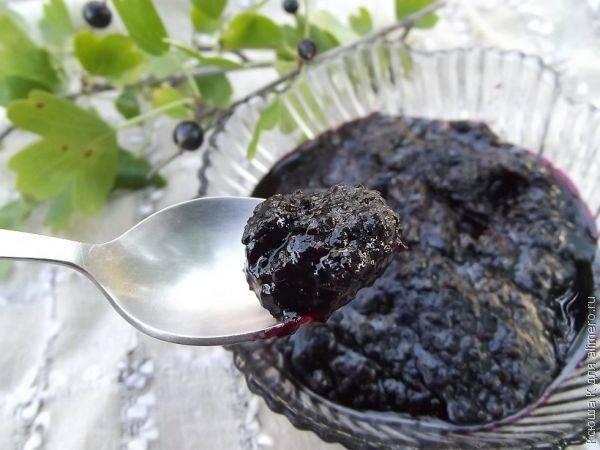 Лучшие рецепты конфитюра из черной смородины на зиму