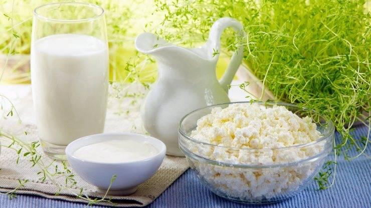 Чем полезно молоко для женщин