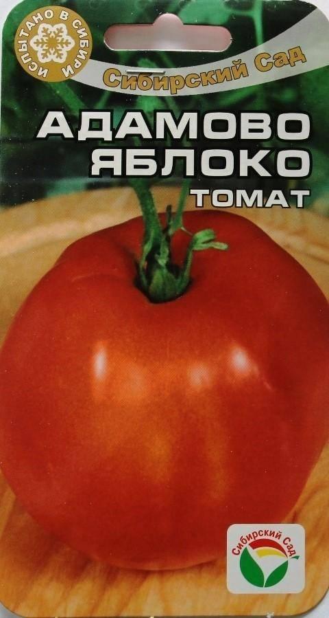 Описание сорта томата яблоки на снегу, его характеристика и урожайность