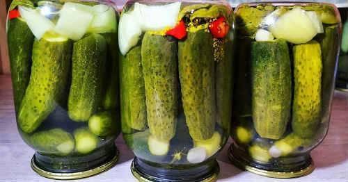 Вкусные огурцы на зиму в 3 литровых банках: лучшие рецепты с фото