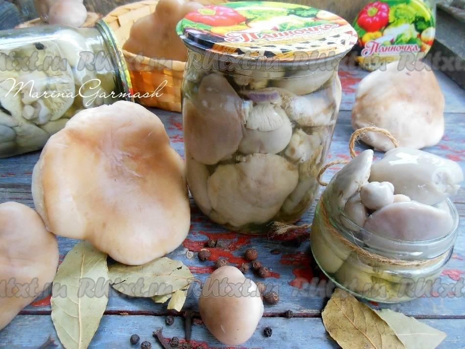 Заготовка грибов на зиму - рецепты