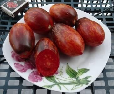 Особенности сорта томатов гном бой с тенью
