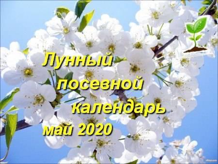 Лунный календарь огородника май: посадочные дни, таблица