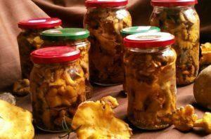 Грузди,соленые горячим способомна зимув банках — лучшие рецепты быстрого приготовления грибов