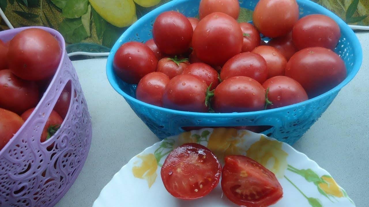 Характеристика, выращивание и описание томата демидов
