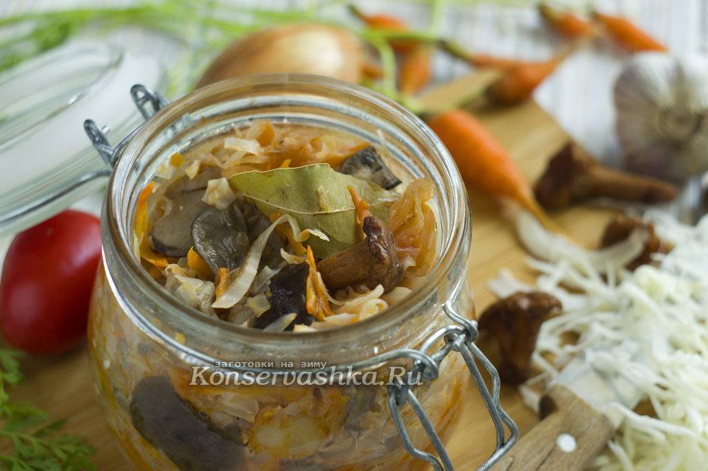 Солянка грибная с капустой: рецепт приготовления на зиму
