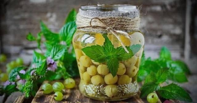 Компот из крыжовника мохито на зиму: топ 9 простых рецептов приготовления
