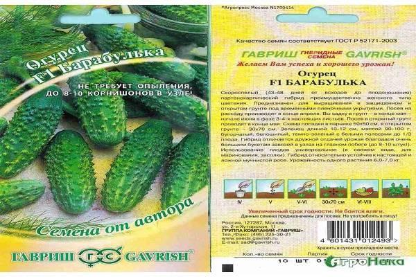 Сорт огурцов директор f1 — подробное описание и правила выращивания