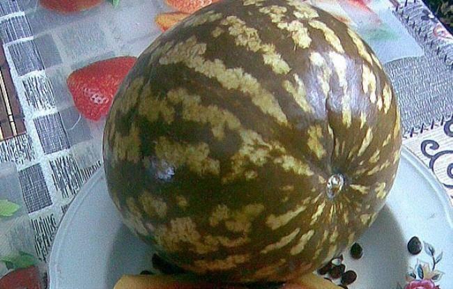 Вкусный бабушкин рецепт как солить арбузы в бочке на зиму