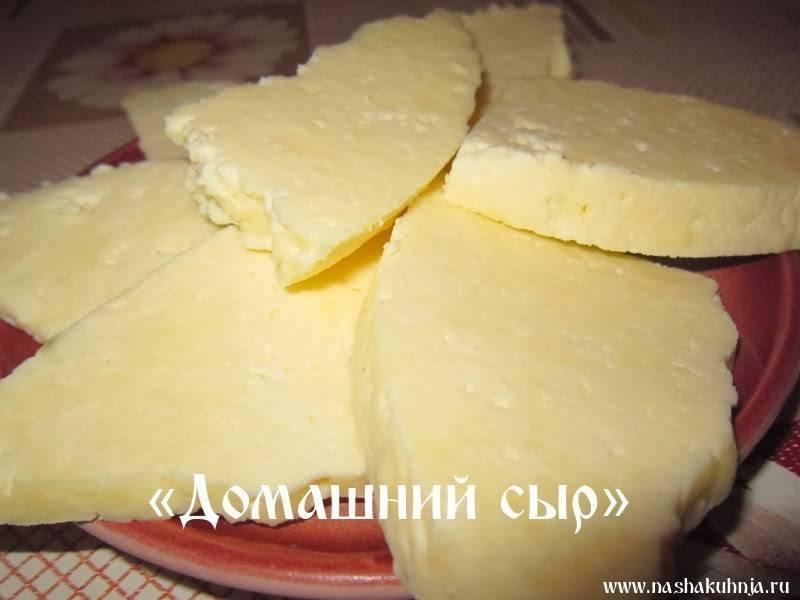 Как сделать сметану из козьего молока