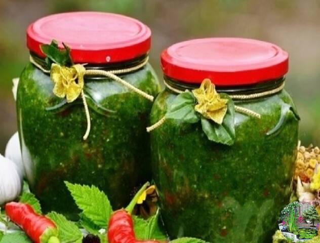 Рыжики на зиму - 13 домашних вкусных рецептов приготовления