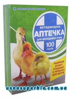 Аптечка для цыплят-бройлеров — содержимое, инструкция по применению