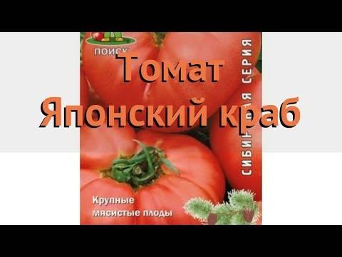 Японский краб – один из лучших салатных сортов помидоров