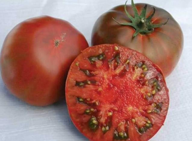 Томат ляна: описание сорта и особенности выращивания