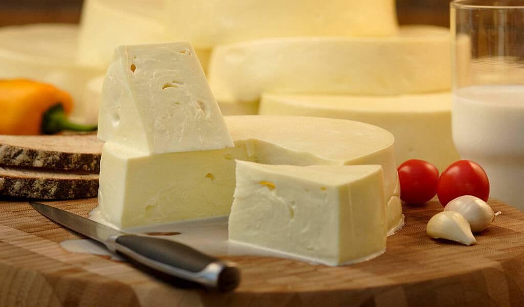 Элитный сыр с голубой и белой плесенью: немного фактов о пользе и вреде продукта
