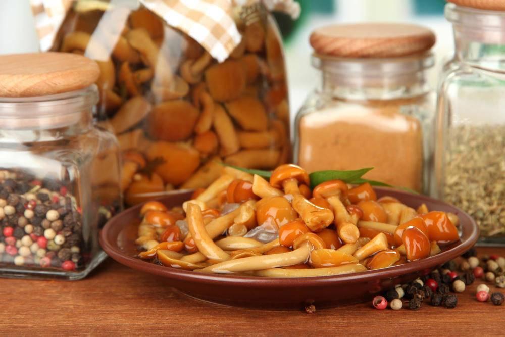 Как мариновать опята на зиму: рецепты заготовки грибов