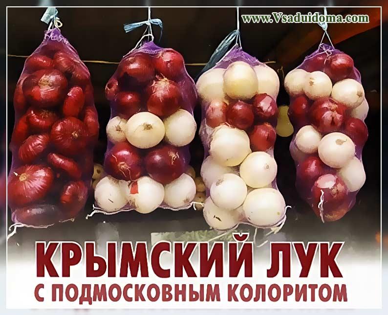 Крымский лук выращивание в средней полосе