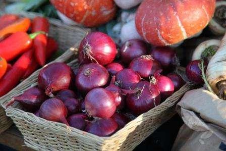 Лучшие рекомендации по выращиванию лука роми: как получить высокий урожай красного сорта?